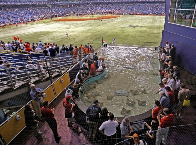 Tropicana Field Guide – Where to Park, Eat, and Get Cheap
